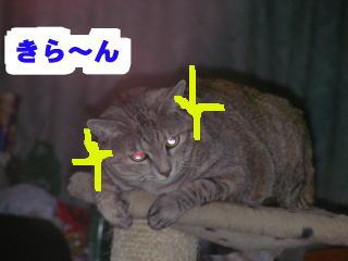 Henshin6