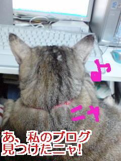 Monku1