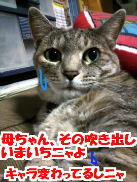 Suwa4