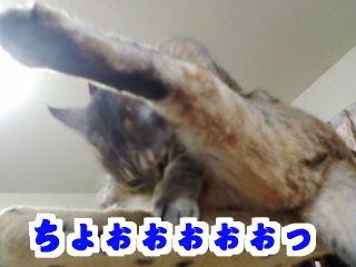 Kick4