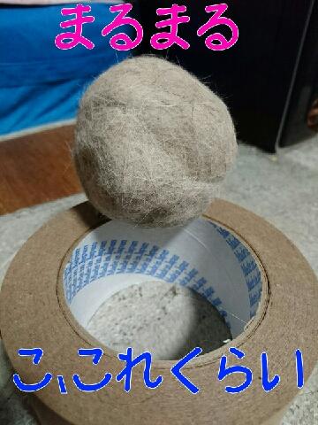1466395690672.jpg