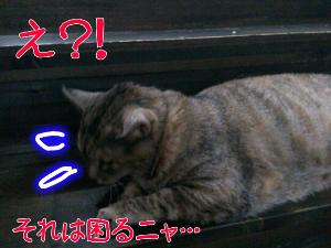 2012-07-20_23.30.05.jpg