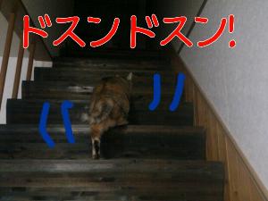 2012-09-24_20.43.07.jpg