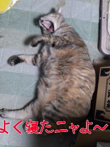 2012101012324.jpg