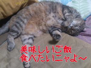20121028153213.jpg