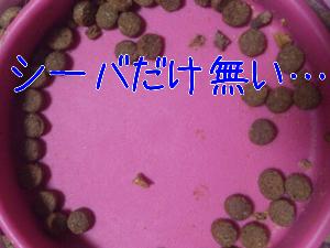 20121028153441.jpg