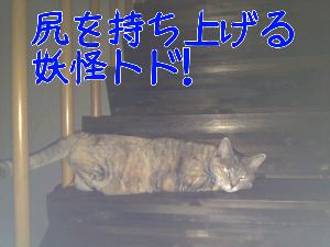 20121110121056.jpg