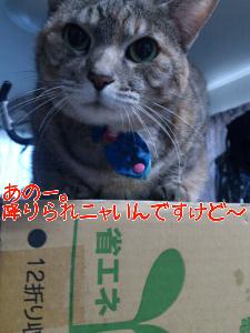 201211682152.jpg