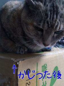201211682247.jpg