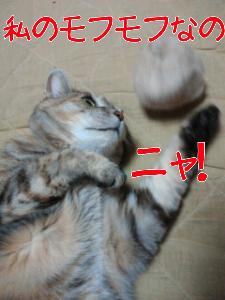 2012623215545.jpg