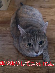 201262674216.jpg