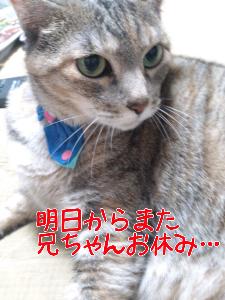 201262975146.jpg