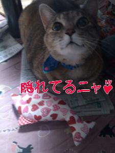 201271373946.jpg