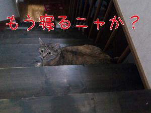2012730121616.jpg