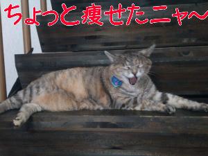 201282881336.jpg