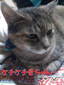 20128374429.jpg
