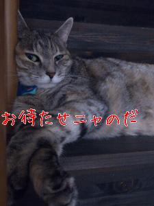 20128782710.jpg