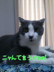 20129120563.jpg