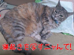 2012919121932.jpg