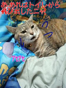 2013-03-12_12.20.16.jpg