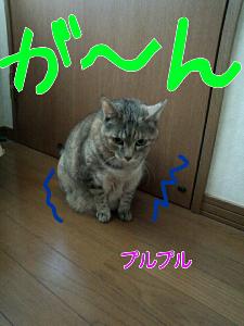 2013-04-01_12.44.19.jpg