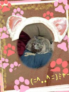 2013-04-14_23.48.25.jpg