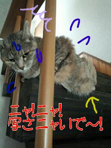 2013-05-30_12.24.05.jpg