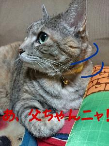 2013-11-14_12.18.16.jpg