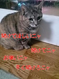 20131018123131.jpg