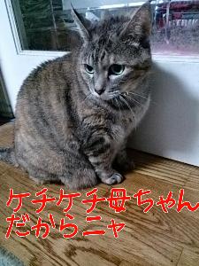 20131018123258.jpg