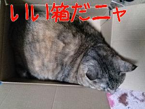 20131021221358.jpg