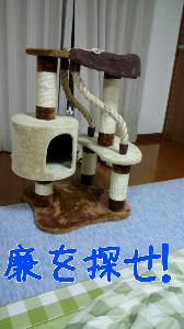 2013108121926.jpg