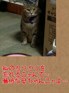 2013128122831.jpg