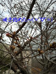 2013326122816.jpg
