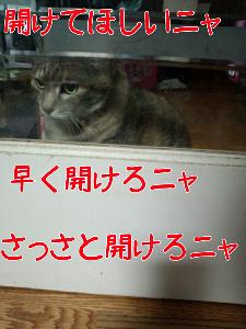 2013328123854.jpg
