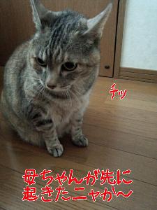 2013427191749.jpg