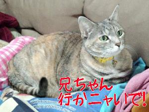 20134312362.jpg