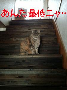 2013521124113.jpg
