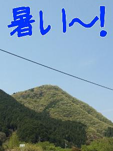 2013524122833.jpg
