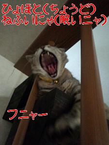 20136522513.jpg