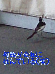 20137912164.jpg