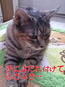 201387121550.jpg
