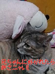 20139715034.jpg