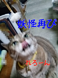 mp_1381980860946.jpg